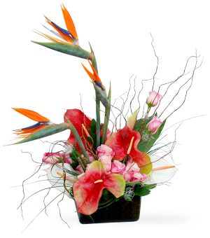 Paradise by Select Florists