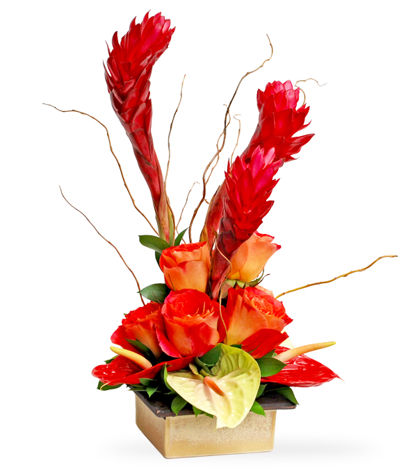 Paradise For You by Select Florists in Elmhurst, Il