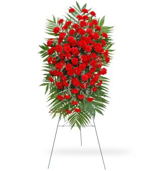 100 Red Carnation Easel Spray Delux