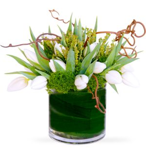 Crisp by Select Florists of Elmhurst, Il.