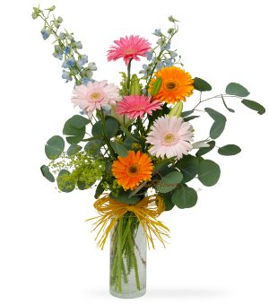 Royal Gerberas by Select Florists in Elmhurst, il.