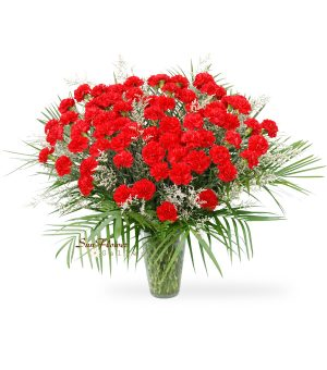 75 Red Carnation Vase Deluxe