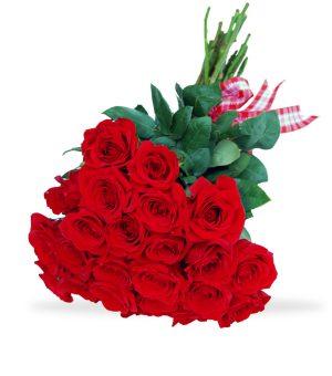 Bright Red Love