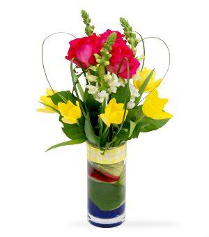 Loveli Tulips